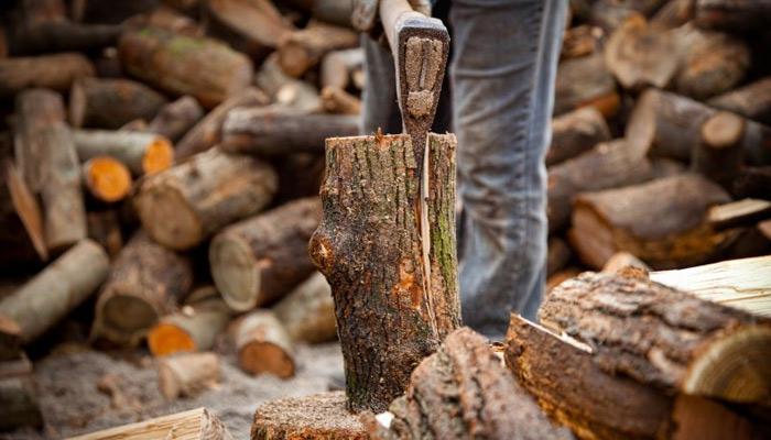 Découpe de bûches de bois